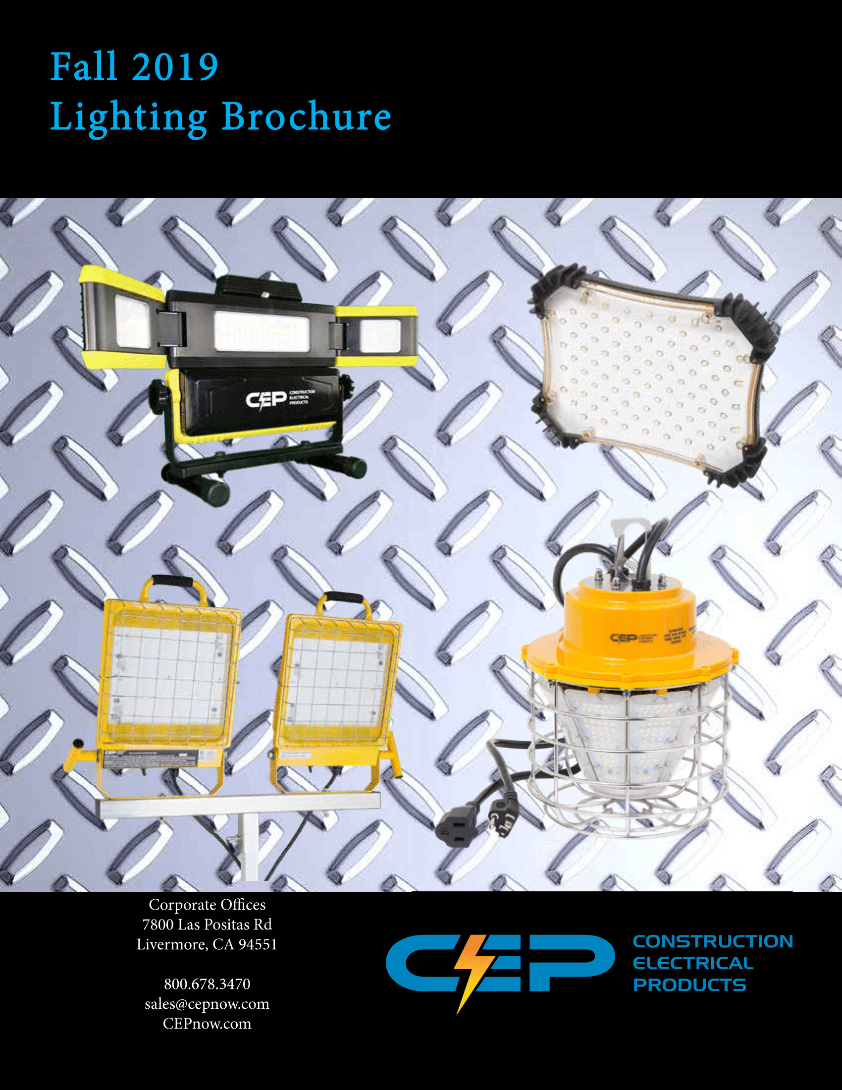 Download our NEW Fall 2019 Lighting Brochure